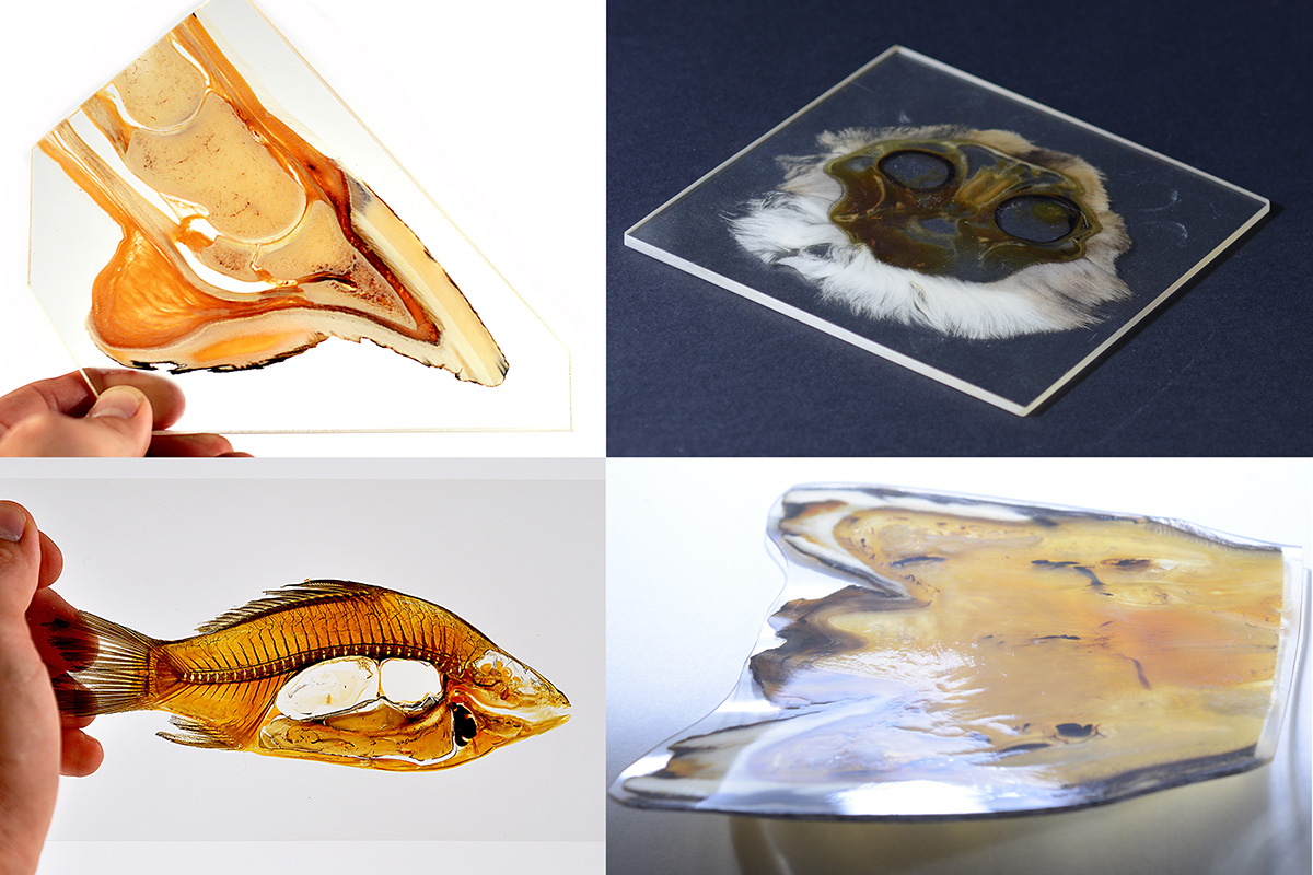 sheet plastinates without acrylic