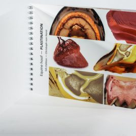 Anatomie und Pathologie Pferdezehe – Ringbuch